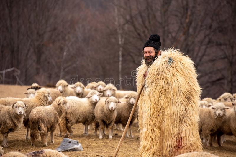 Authentic shepherd from Romania in the Carpathian mountains.  royalty free stock images