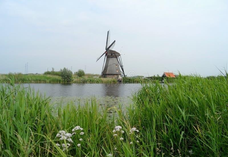 Authentieke Nederlandse Windmolen bij Kinderdijk-Complexe Windmolen stock foto