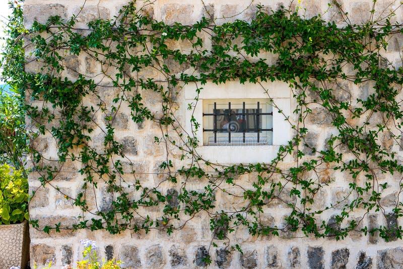 Authentisch, Backsteinmauer mit den schönen, alten, hölzernen Fensterläden, Fenster stockfoto