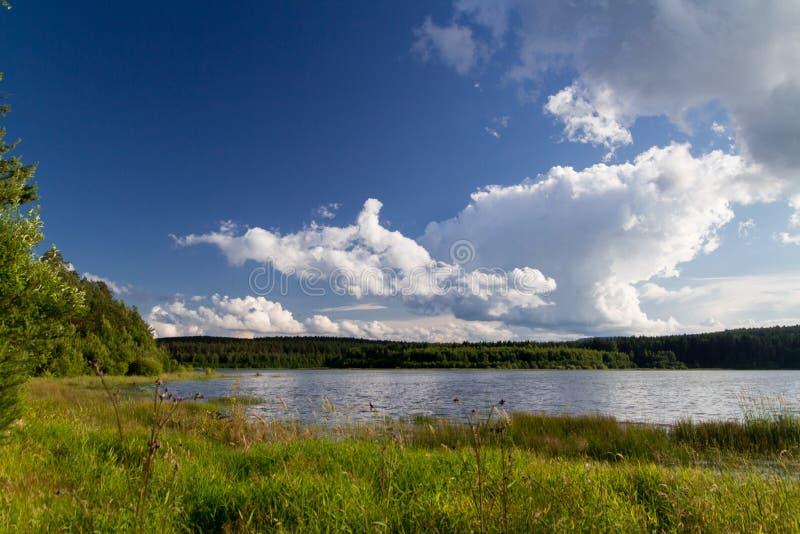 Authentischer See mit blauem Himmel und Gras lizenzfreies stockbild