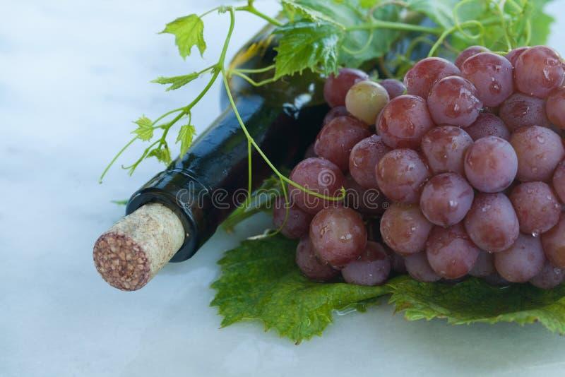 Authentisches biologisches Lebensmittel Traube italienische delishes lizenzfreies stockfoto