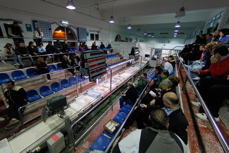 Authorized buyers bidding for captures on a fish market. Authorized buyers sit while watching and bidding for the boxes of daily fish captures offered on a local royalty free stock photos