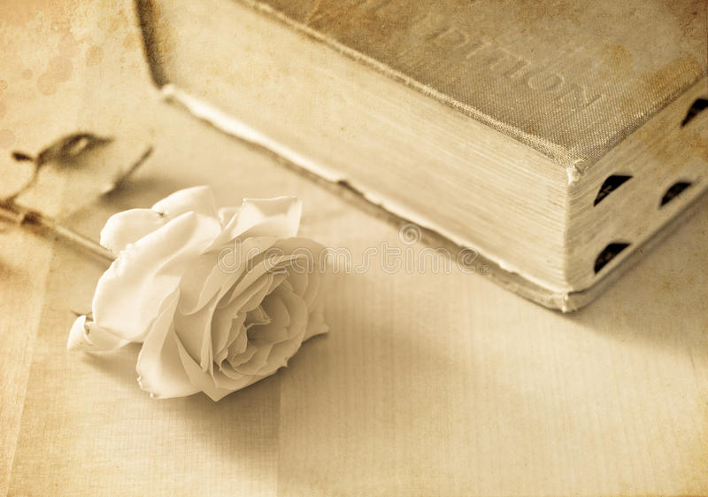 An Authors Dedication of Love. Conceptual Image stock photos