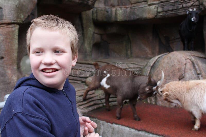 Autistische Jongen bij de Dierentuin Petting stock foto