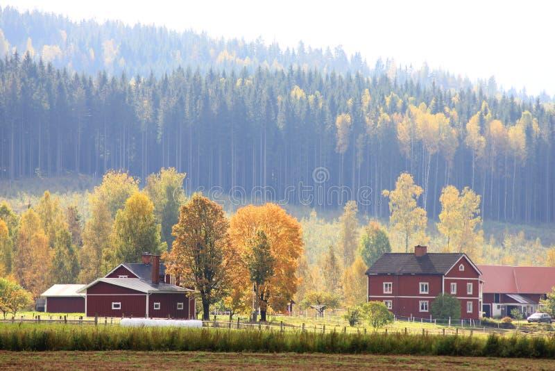Autmn landskap med röda hus arkivbild