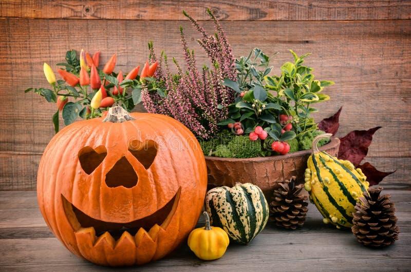 Autmnbloemen en pompoen Halloween stock afbeeldingen