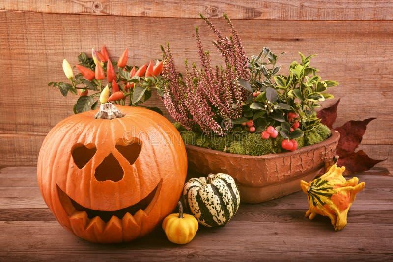 Autmnbloemen en pompoen Halloween royalty-vrije stock afbeeldingen
