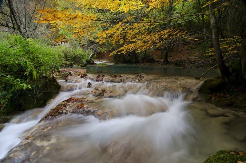Autmun rzeka zdjęcia stock