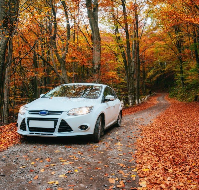 Auto auf einem Waldweg stockfotos