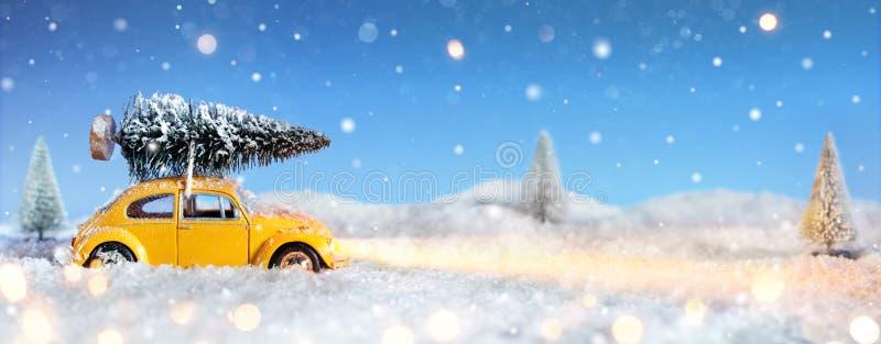 Auto, das einen Weihnachtsbaum transportiert stockbilder