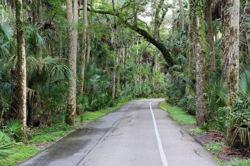 Auto estrada da excursão imagens de stock