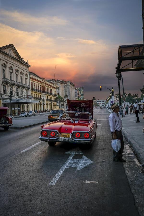 Auto in Havana stockfotos