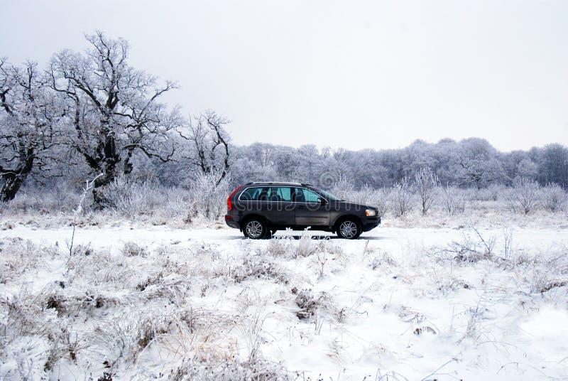 Auto offroad in sneeuw royalty-vrije stock afbeelding