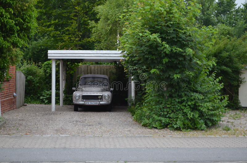 Auto onder bomen royalty-vrije stock foto
