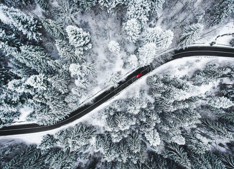 Auto op weg in de wintertrog een bos met sneeuw wordt behandeld die royalty-vrije stock afbeeldingen