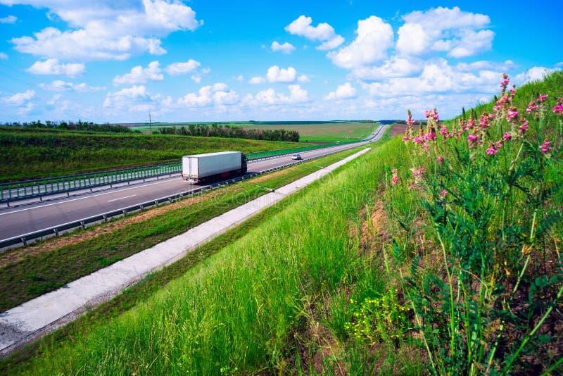 Auto's het drijven op de weg langs het bloeien wildflowers stock afbeelding