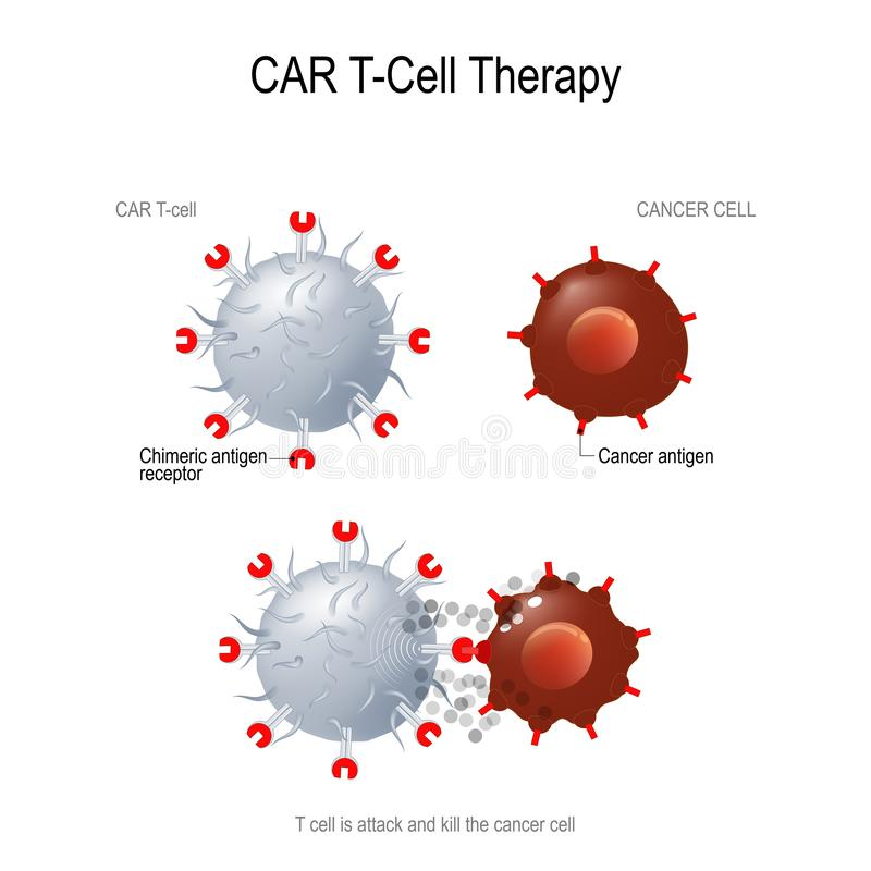 Auto's voor kankertherapie vector illustratie