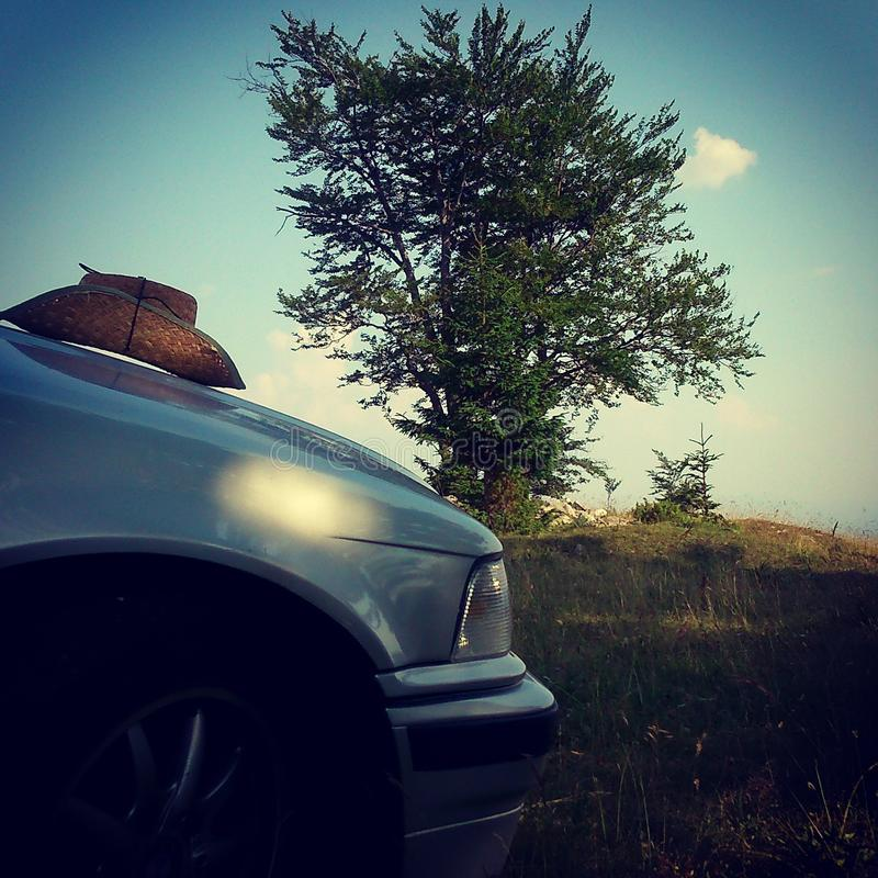 Auto und Holz lizenzfreies stockfoto