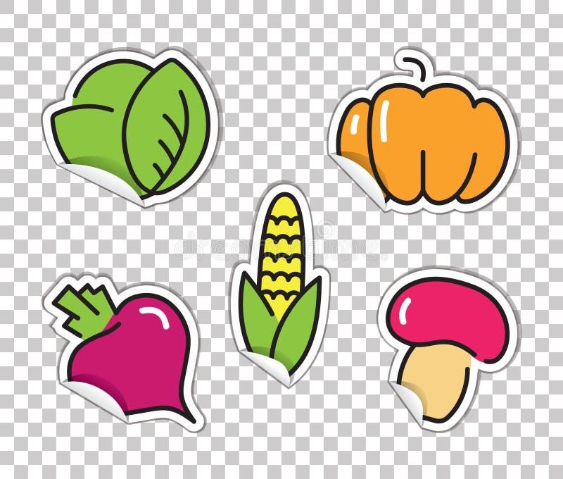 Autoadesivi con le immagini delle verdure Cavolo, zucca, barbabietole, cereale, funghi illustrazione vettoriale