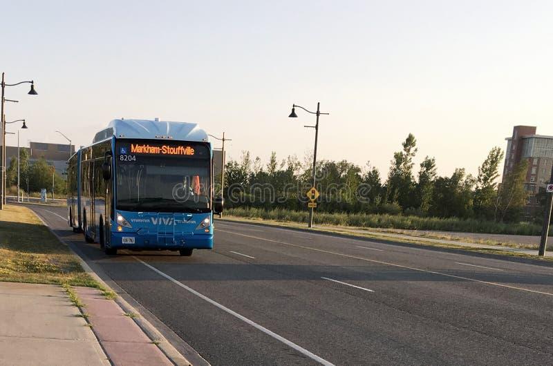 Autobús de Viva fotos de archivo