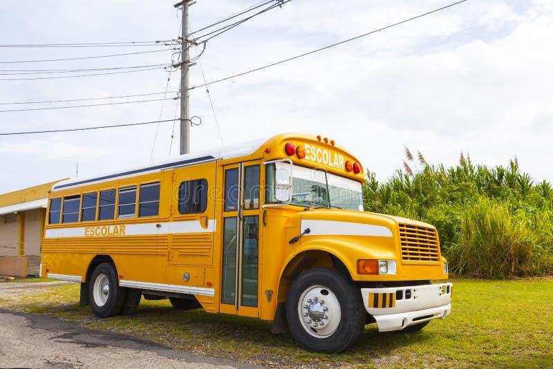 Autobús del Escolar (escuela) foto de archivo
