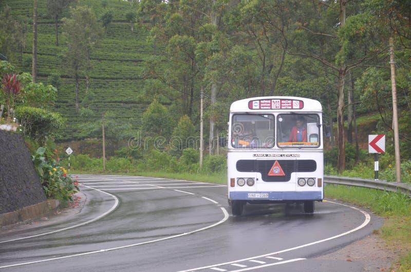 autobus de déplacement dans des côtés de montagne photos libres de droits