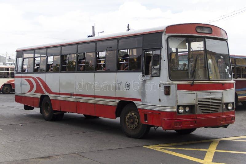Autobus. Stop zone in Mauritius royalty free stock photo
