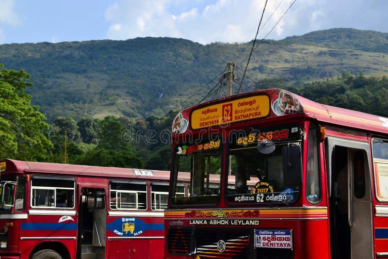 Autobuses rojos en la estación imágenes de archivo libres de regalías