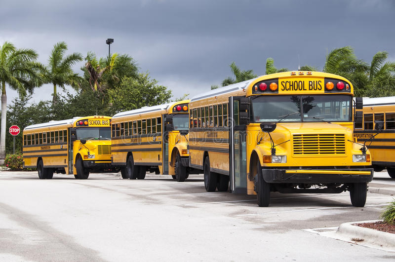 Autobusy Szkolni