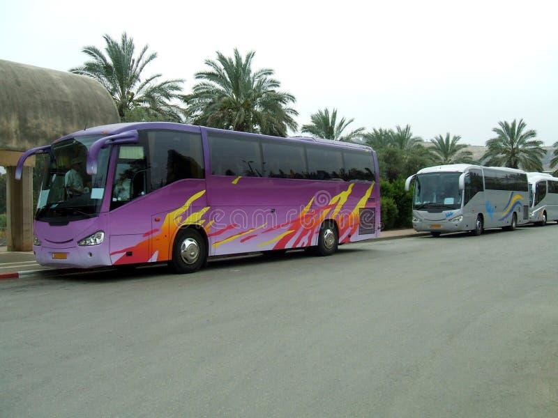 autobusy trenery Autobusy lub trenery parkujący w parking samochodowym zdjęcia royalty free