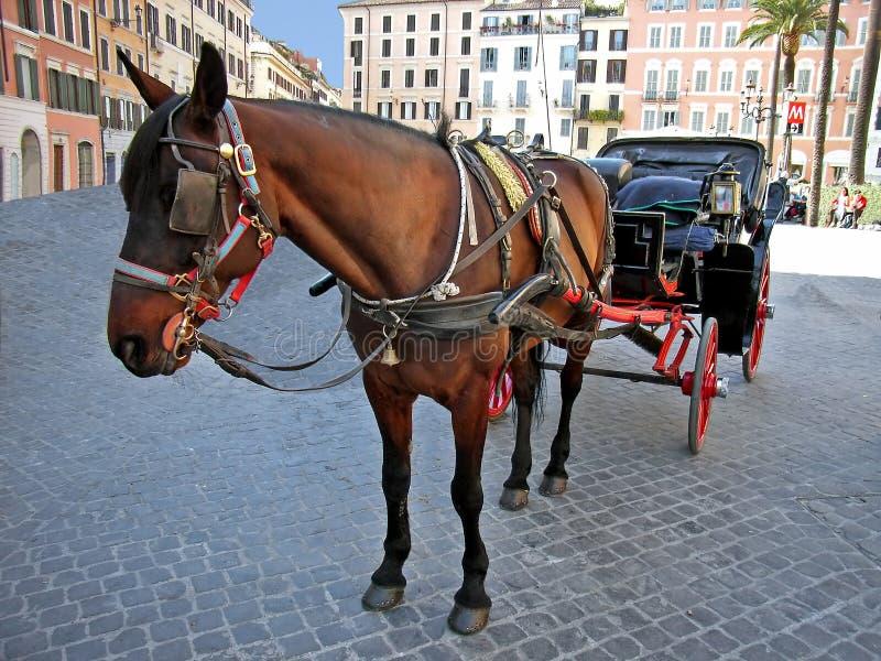 Autocar de cheval à Rome photos libres de droits