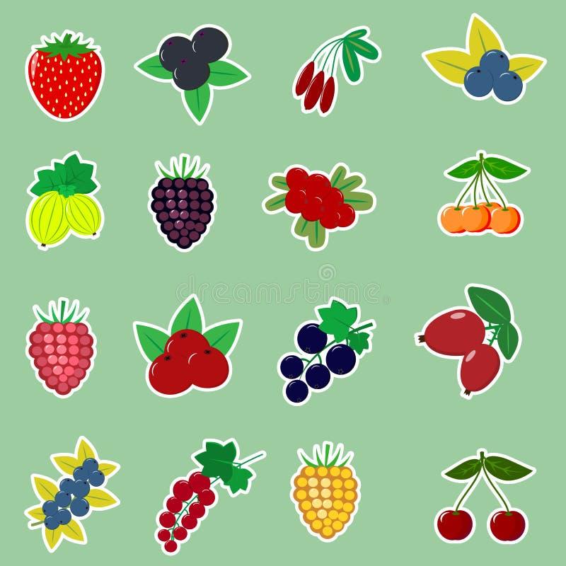 Autocollants d'icônes de différents fruits et baies avec un contour blanc, rassemblés en ensemble sur un fond vert illustration libre de droits