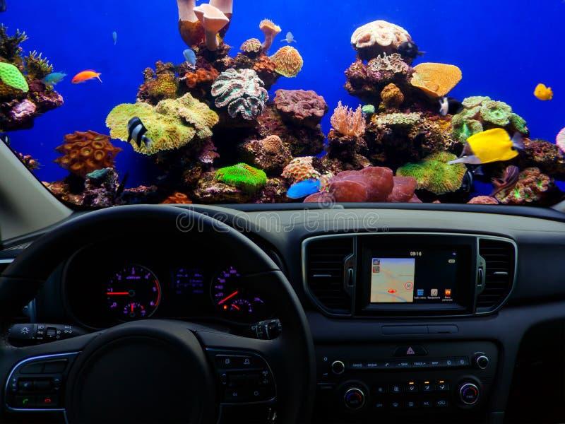 Autodashboard onderwater reizen royalty-vrije stock foto's