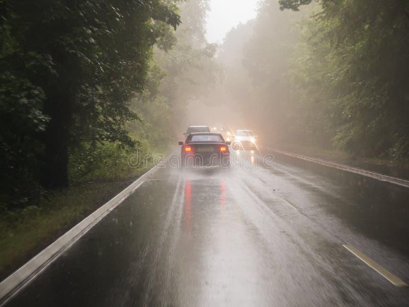 Autofahren auf eine nasse Straße durch Waldland lizenzfreie stockbilder