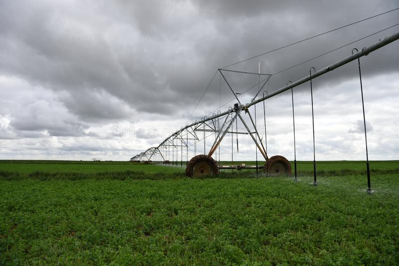 Automated agricultural center pivot irrigation field watering sprinkler system royalty free stock images