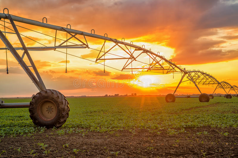 Automated farming irrigation system in sunset. Automated farming irrigation sprinklers system on cultivated agricultural landscape field in sunset royalty free stock photography