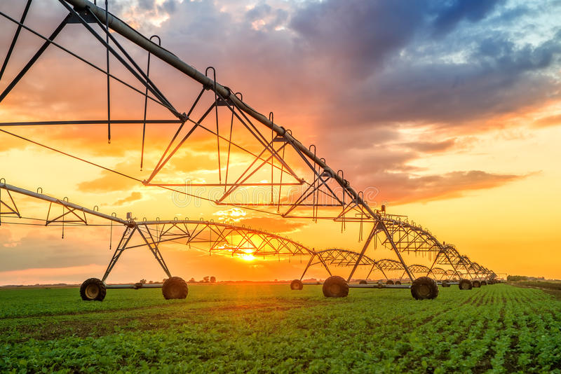 Automated farming irrigation system in sunset. Automated farming irrigation sprinklers system on cultivated agricultural landscape field in sunset stock photography