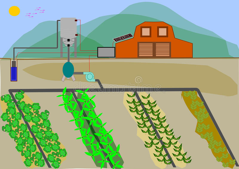Automated irrigation system. Currently there are agricultural farms with solar panels that feed electrically to automated irrigation system, using a source of vector illustration
