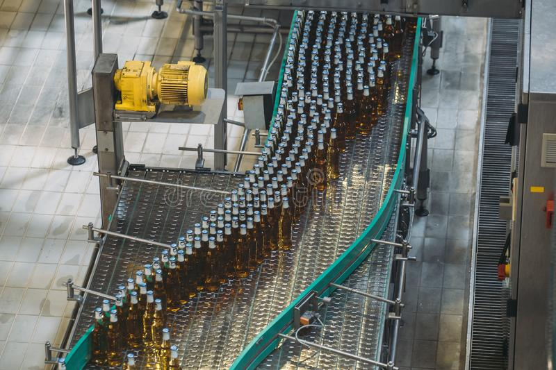 Automatic conveyor line or belt with glass bottles at brewery production. Industrial beer bottling equipment machinery stock photo