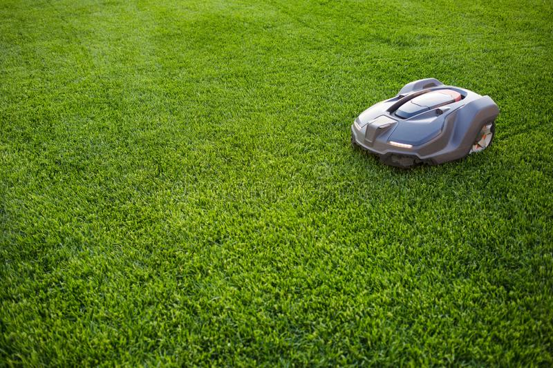 Automatic lawn mower robot moves on the grass, lawn. side view from above, copy space royalty free stock photo