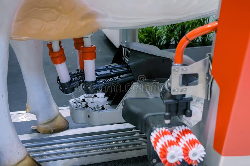 Automatic milking robot arm machine at cattle dairy farm, trade show - close up royalty free stock image