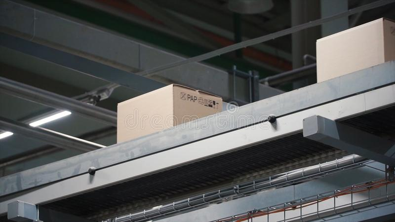 Automation - Cardboard boxes on conveyor belt in factory. Clip. Boxes moving on the conveyor at the factory stock photo