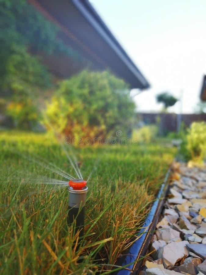 Automatisch irrigatiesysteem voor de tuin dichtbij de stoep stock afbeelding