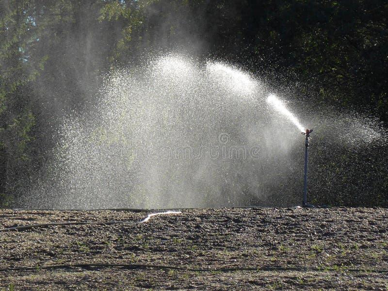 Automatische irrigatie stock foto's