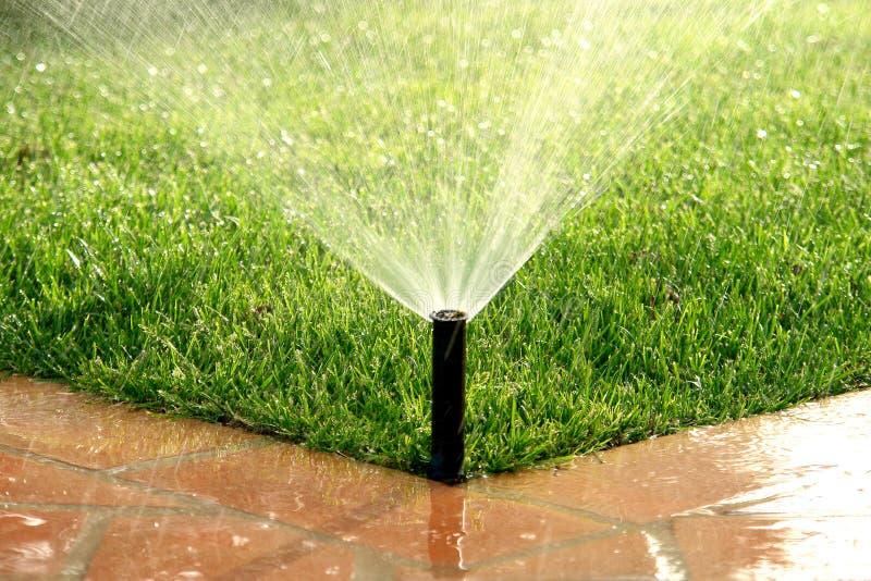 Automatischer wässernrasen des Bewässerungssystems des Gartens lizenzfreie stockfotografie