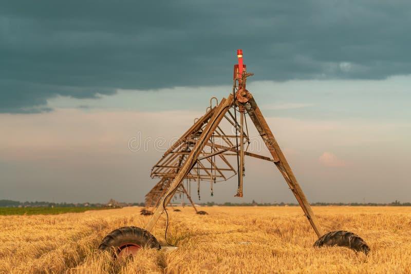 Automatisiert, Bewässerungsmaschinerie mit Berieselungsanlagen auf dem Gerstengebiet bewirtschaftend lizenzfreies stockfoto