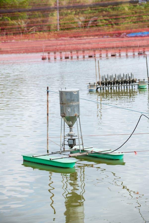 Automatiskförlagemataremaskin som svävar på vattenbrukdammet Autometic förlagematare eller automatisk matning på det jord- dammet royaltyfri fotografi