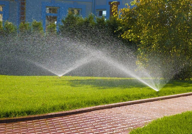 automatiskt bevattna för sprinkler fotografering för bildbyråer