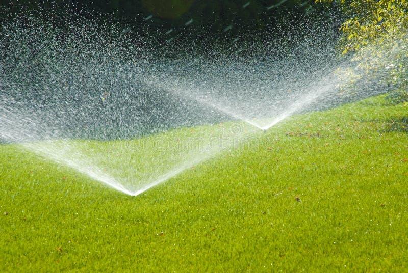 automatiskt bevattna för sprinkler royaltyfria bilder