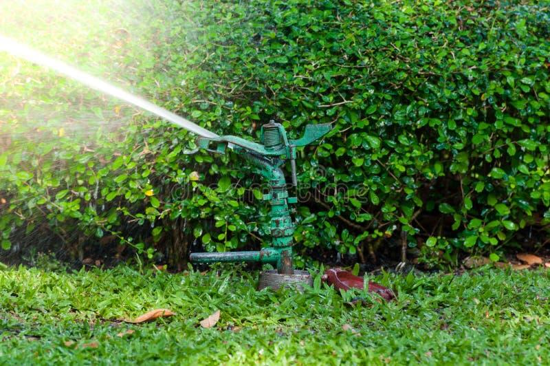 Automatiskt spridarevattensystem för bevattning, trädgård eller Garde royaltyfria foton